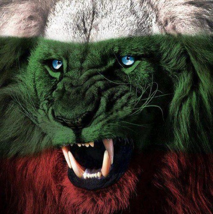 Български лъв - Своболюб Българов