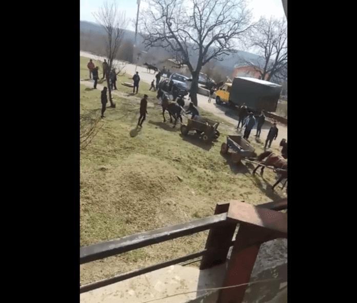 Цигани малтретират коне. Снимка: Скрийншот от клипа